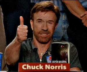 chuck_norris_approved2